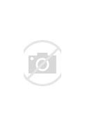 Image result for leftism book eric von